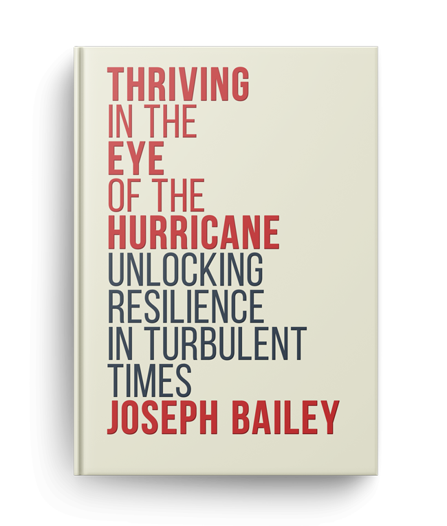 """new book cover for """"Thriving in the Eye of the Hurricane"""""""